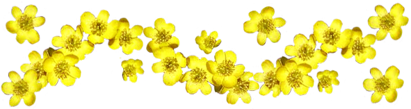 Spring Clipart.