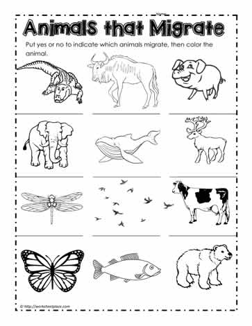 Animals that Migrate Worksheets.