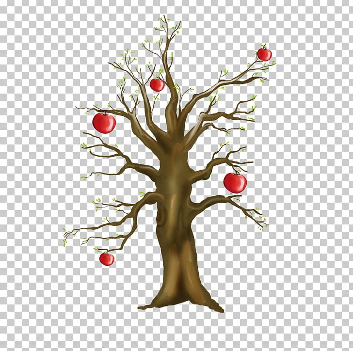 Tree Photography Winter PNG, Clipart, Apple, Apple Tree.