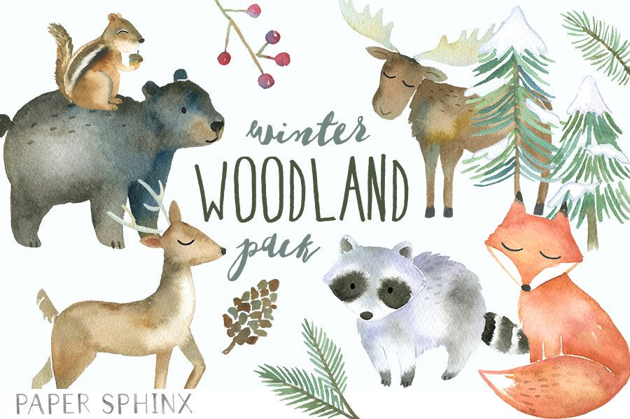 Winter Woodland Animals Clipart.