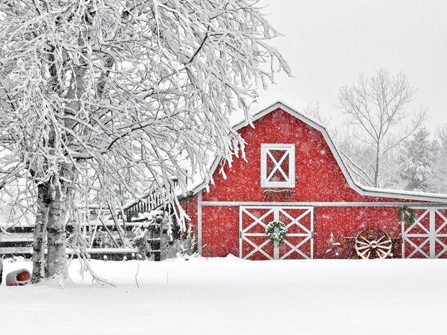 10 Beautiful Snow.