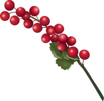 Winter Berries Clip Art.