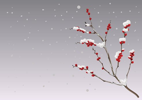 Season winter. Branch berries under snow Clipart Image.