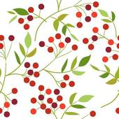 Red Berries Clip Art.