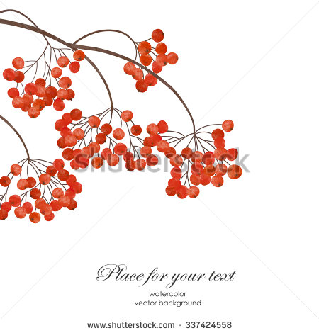 Winter Branches Clipart (42+).