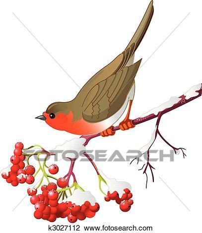 Winter bird Clipart.