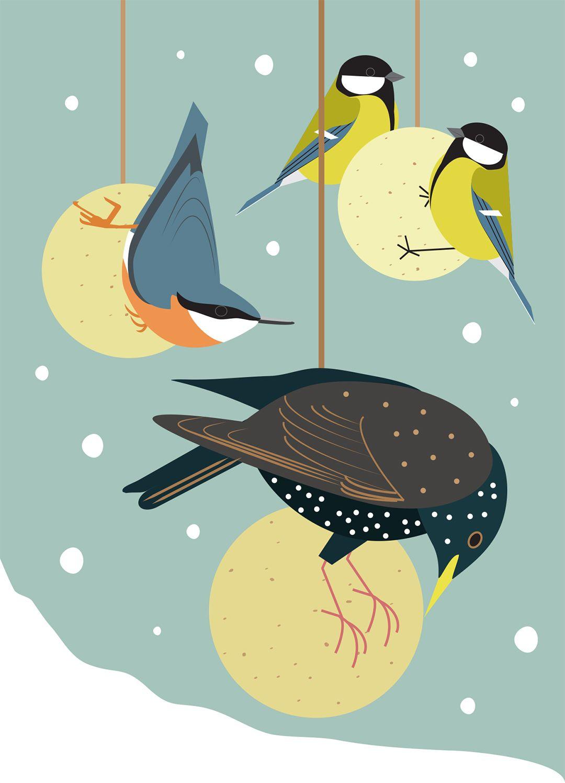 Baubles for birds (Christmas Card) by Rachel Hudson.
