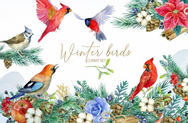 Winter Birds Christmas Clipart.