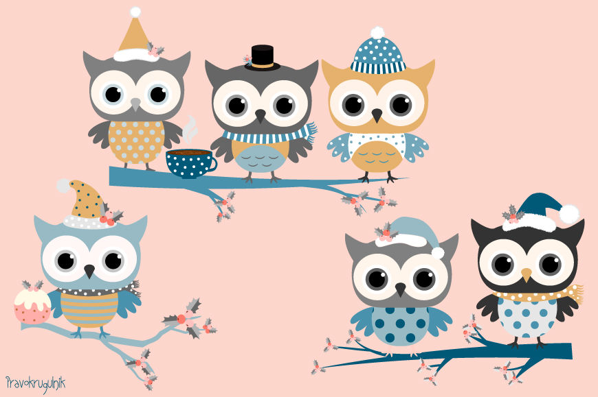 Winter owls clip art set, Holiday owl in blue colors, Cute.