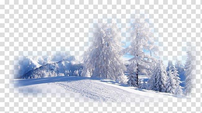Desktop Winter Nature Snow Landscape, winter transparent.