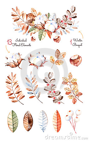 Winter Collection With 13 Hand Painted Watercolor Elements + 1.
