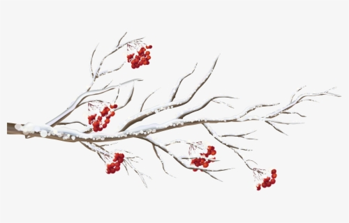 Free Winter Trees Clip Art with No Background.