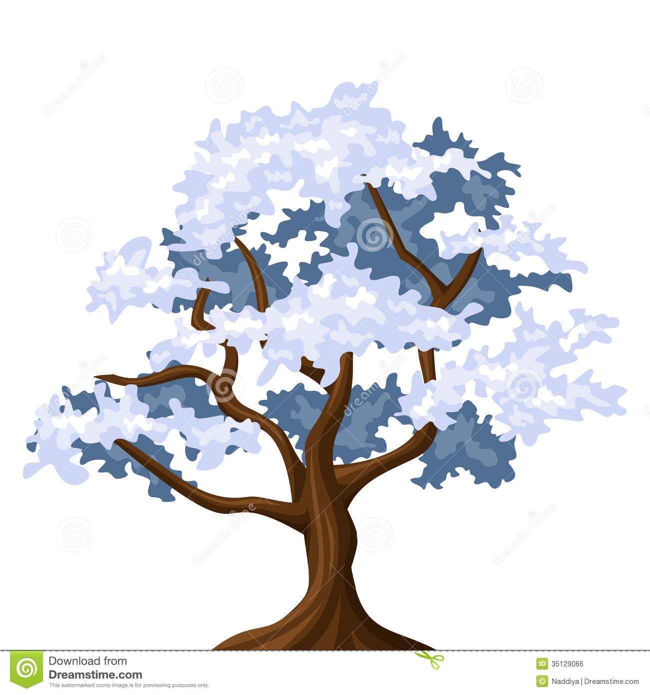 Snowy Oak Tree. Royalty Free Stock Image.