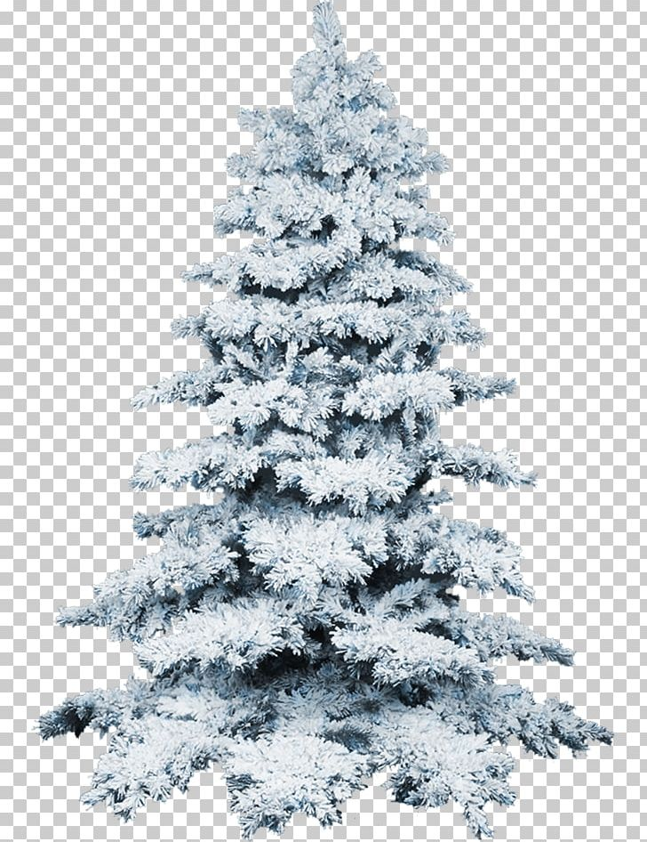 Christmas Tree Snow PNG, Clipart, Black And White, Christmas.