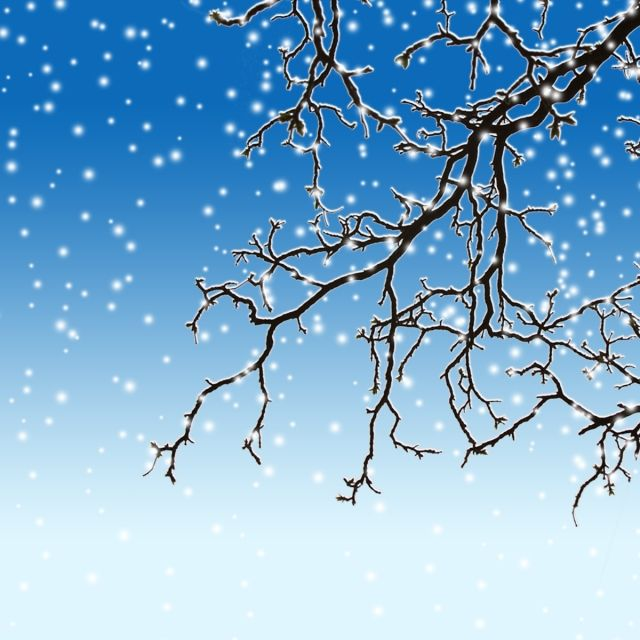 Winter Snow Tree, Winter Clipart, Winter, Snow PNG.