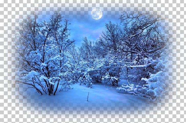 Desktop Winter Night Sky PNG, Clipart, 1080p, Blue, Branch.