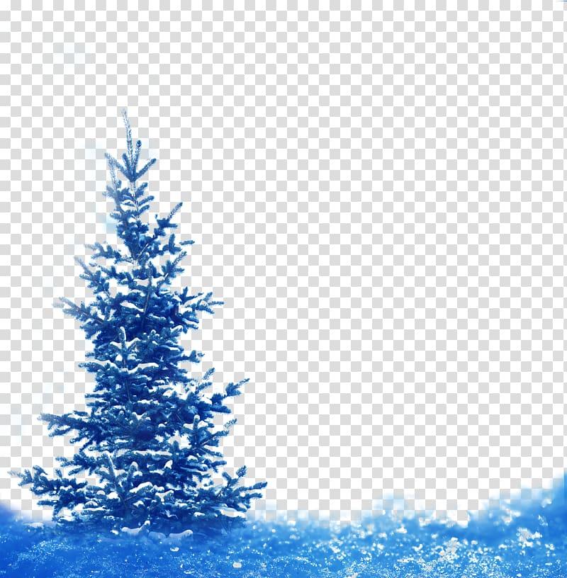 Spruce Fir Winter Snow Landscape, Fantasy blue snowflake.