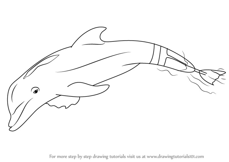 Dolphin Winter Coloring Pages.