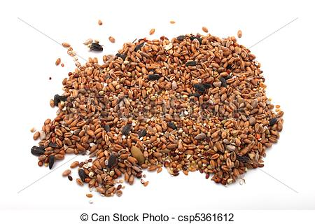 Stock Photo of Wild bird food, put out in a garden to feed wild.
