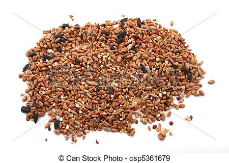 Stock Photographs of Wild bird food, put out in a garden to feed.
