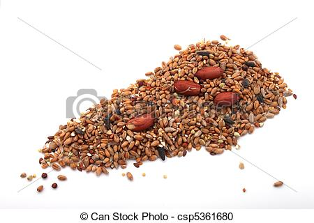 Stock Photography of Wild bird food, put out in a garden to feed.