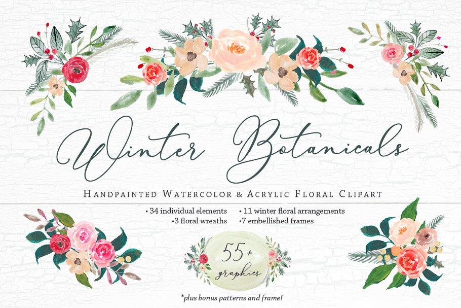 Winter Botanicals Clipart ~ Illustrations ~ Creative Market.