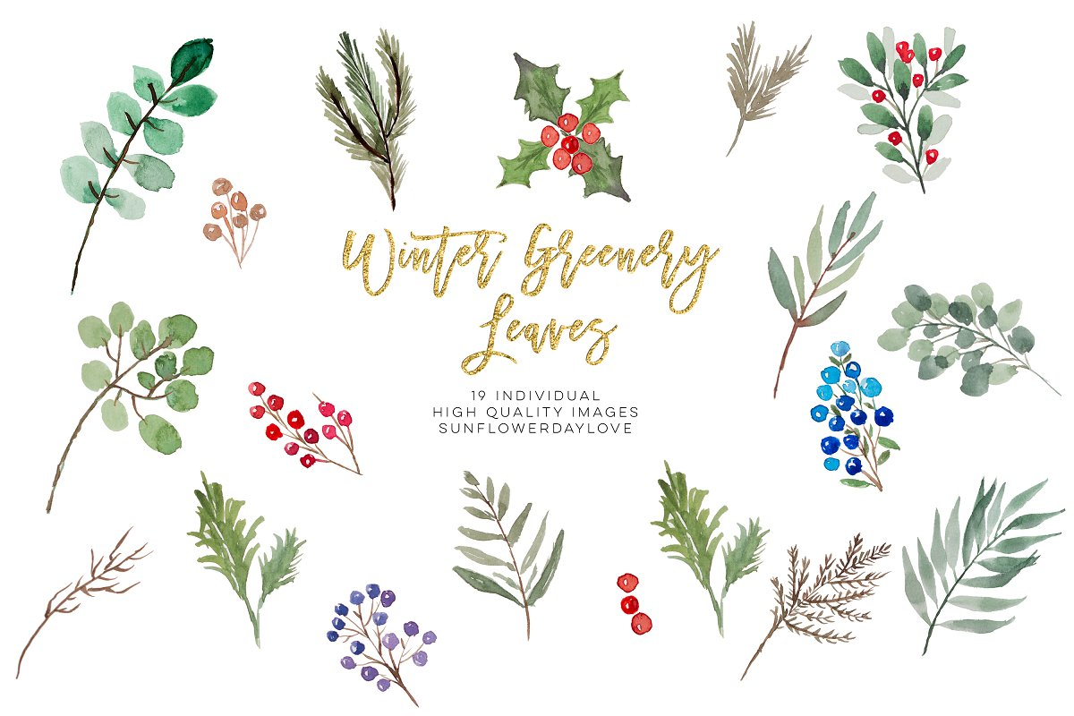 winter greenery leaves clipart.