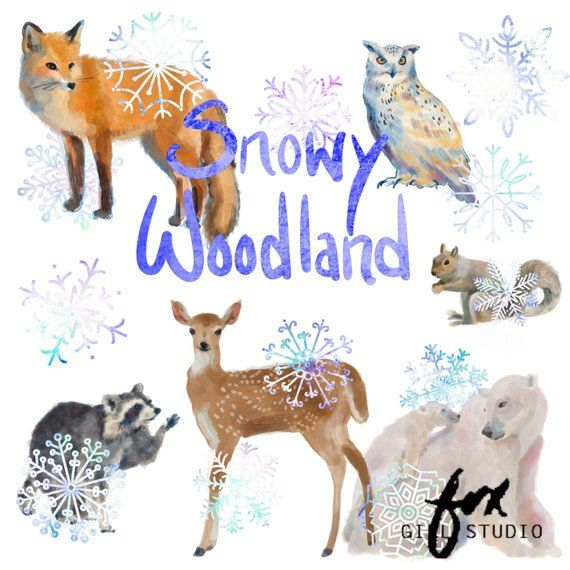 Winter Clipart, Woodland Clipart, Woodland Animals, Fox, Owl.