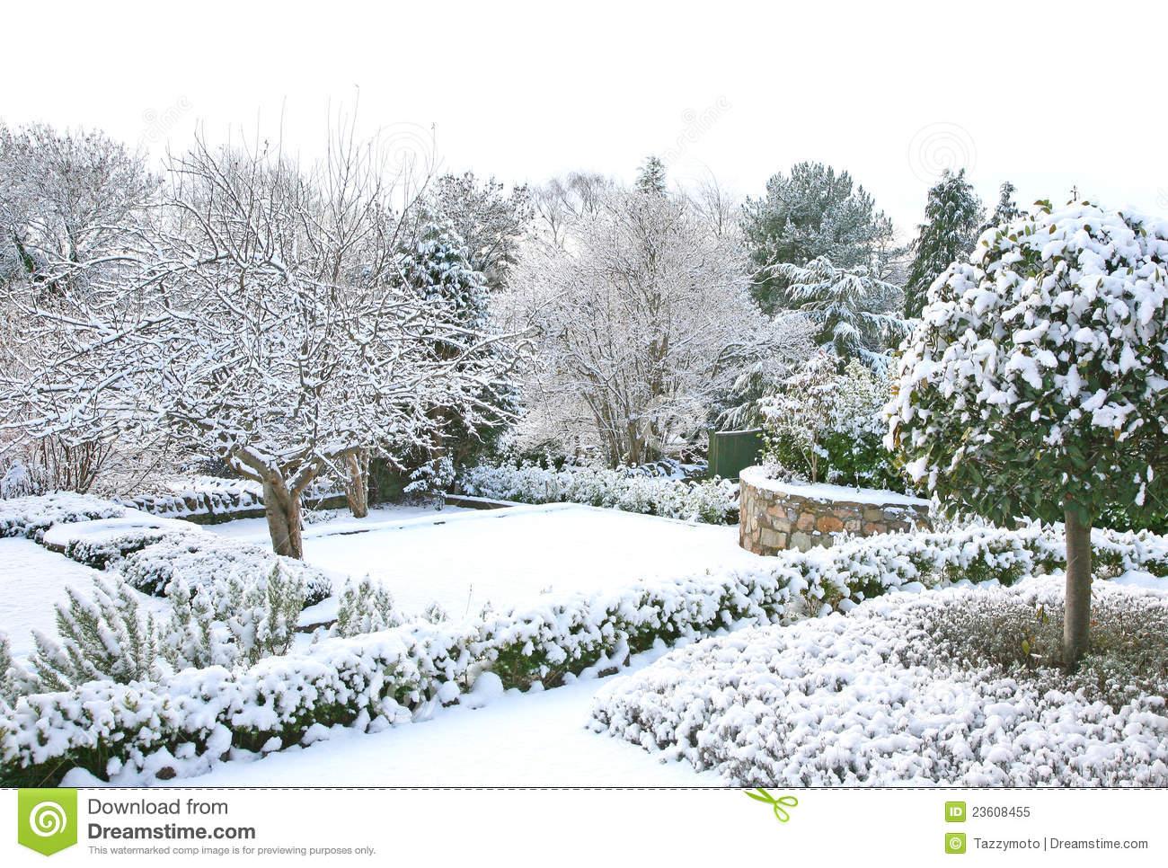 Winter garden clipart.