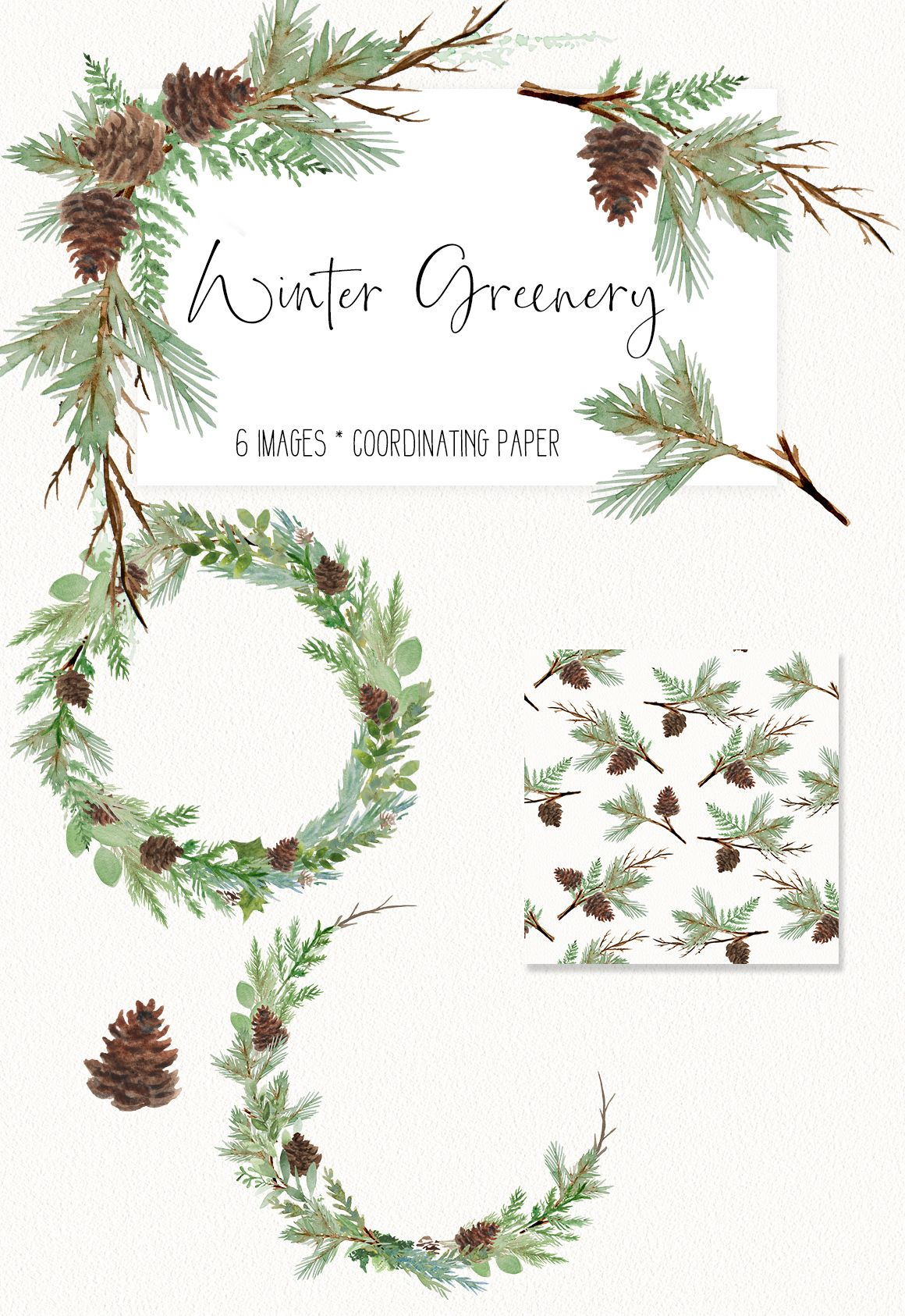 Winter Watercolor Greenery Clip Art 7 piece set.