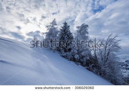 Snow Trees Barn Stock Photos, Royalty.