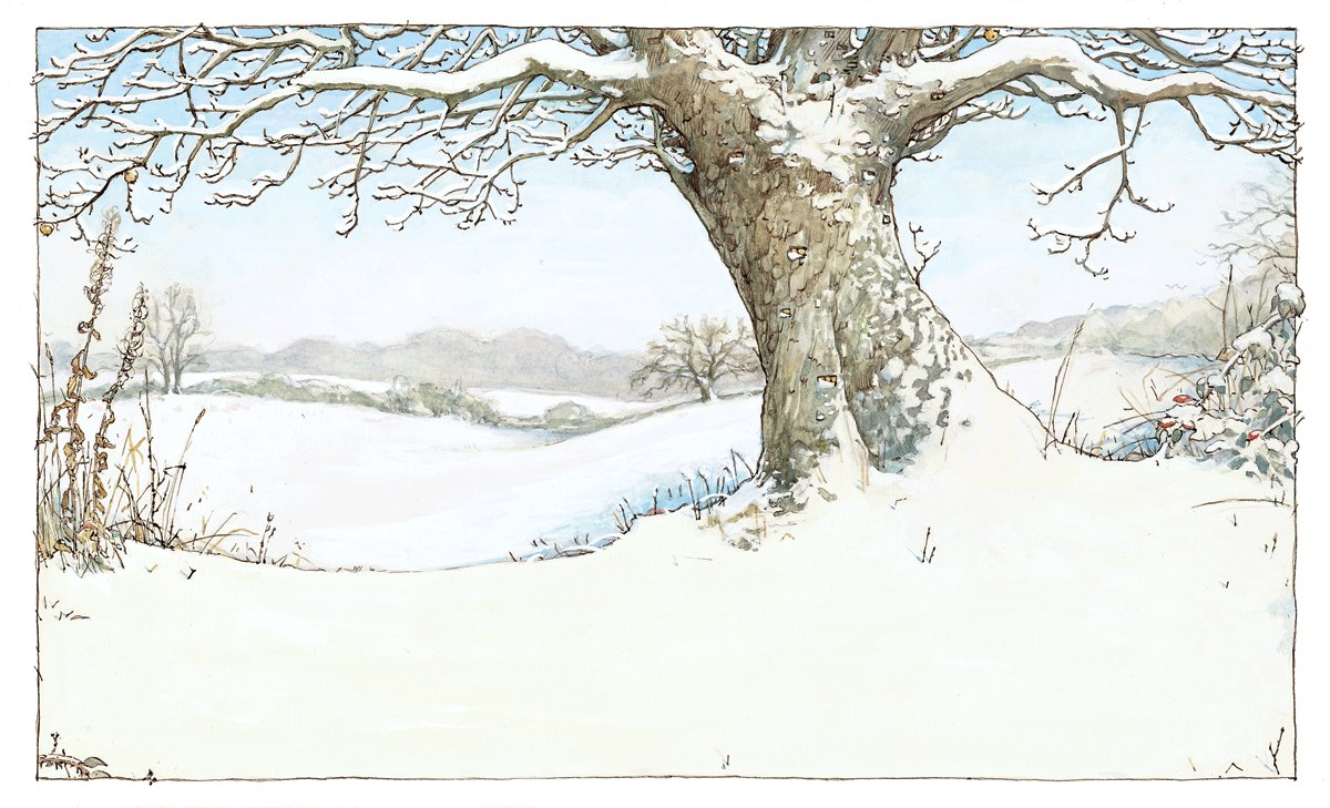 1000+ images about brambly hedge autumn and winter on Pinterest.