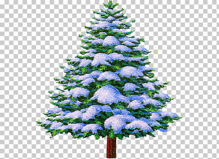 Christmas Wish Blessing Night, Winter Holiday PNG clipart.