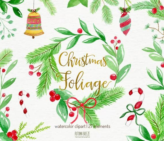 Christmas clipart, christmas watercolor foliage, holiday.