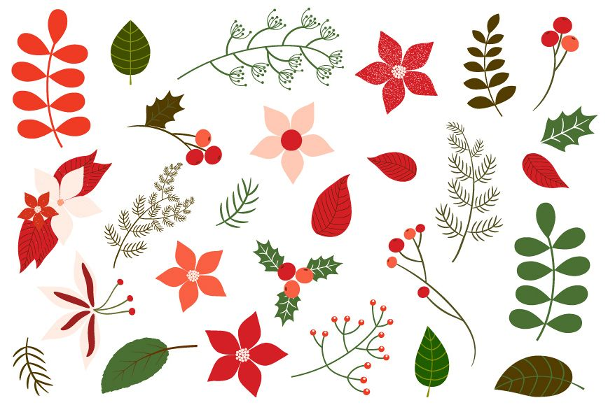Christmas foliage, Holiday floral clipart.