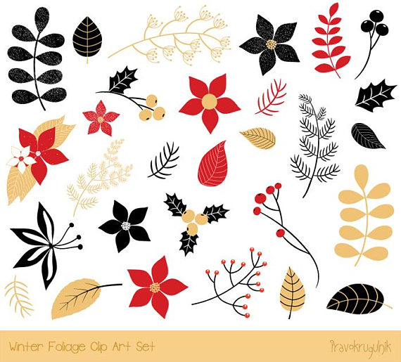 Christmas flower clipart, Christmas foliage clipart, Holiday.