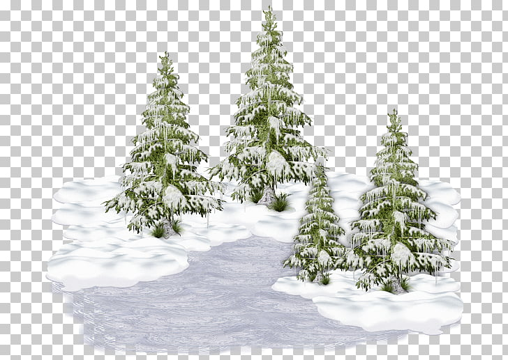 Christmas tree Winter Holiday New Year, christmas tree PNG.