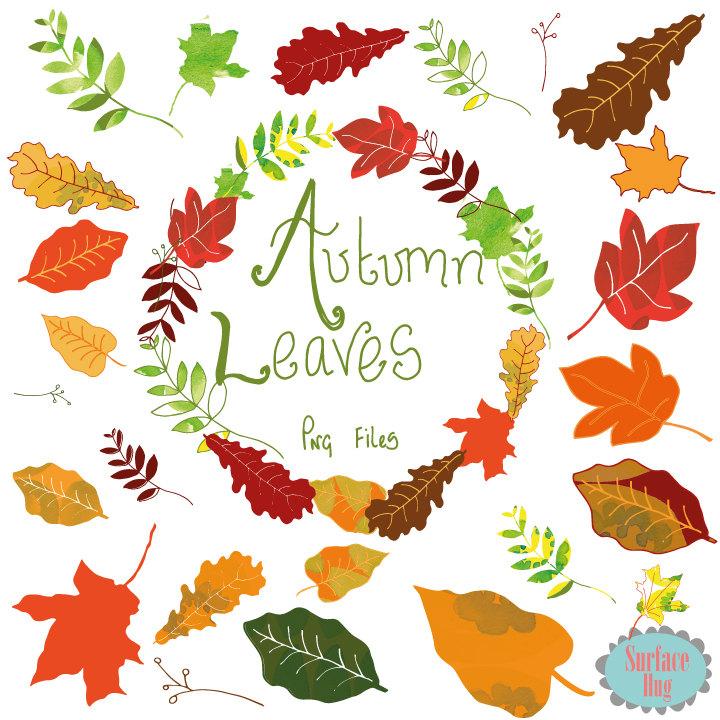 Leaf Clipart AUTUMN LEAVES clip art Leaf clip art Autumn clip.