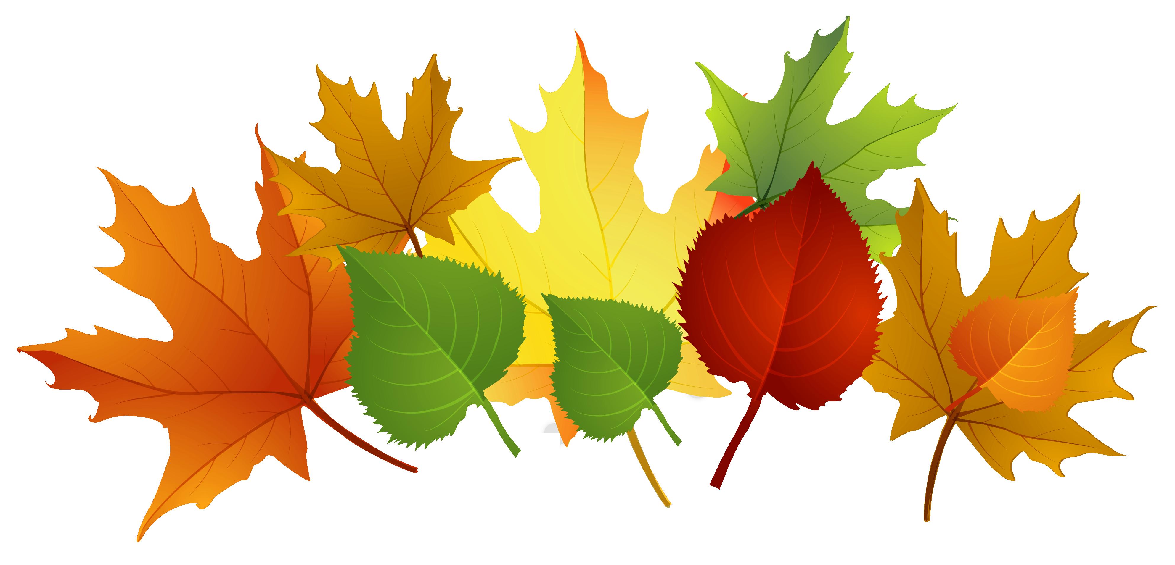 Colors Of Autumn Clipart