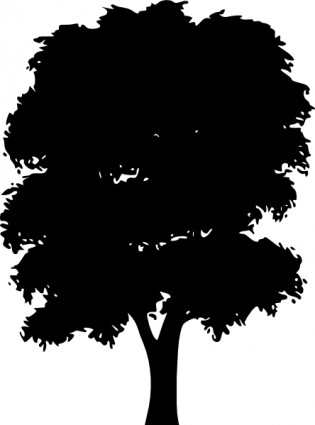 Evergreen Tree Clipart.