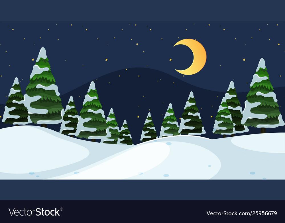 A simple winter scene at night.