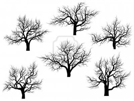 Set of vector silhouettes of oak trees without leaves during the.