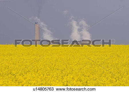 Stock Photo of England, Oxfordshire, Didcot, Didcot Power Station.