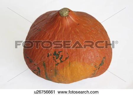 Stock Photography of Onion squash pumpkin u26756661.