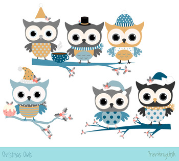 Winter Owl Clipart Worksheets & Teaching Resources.