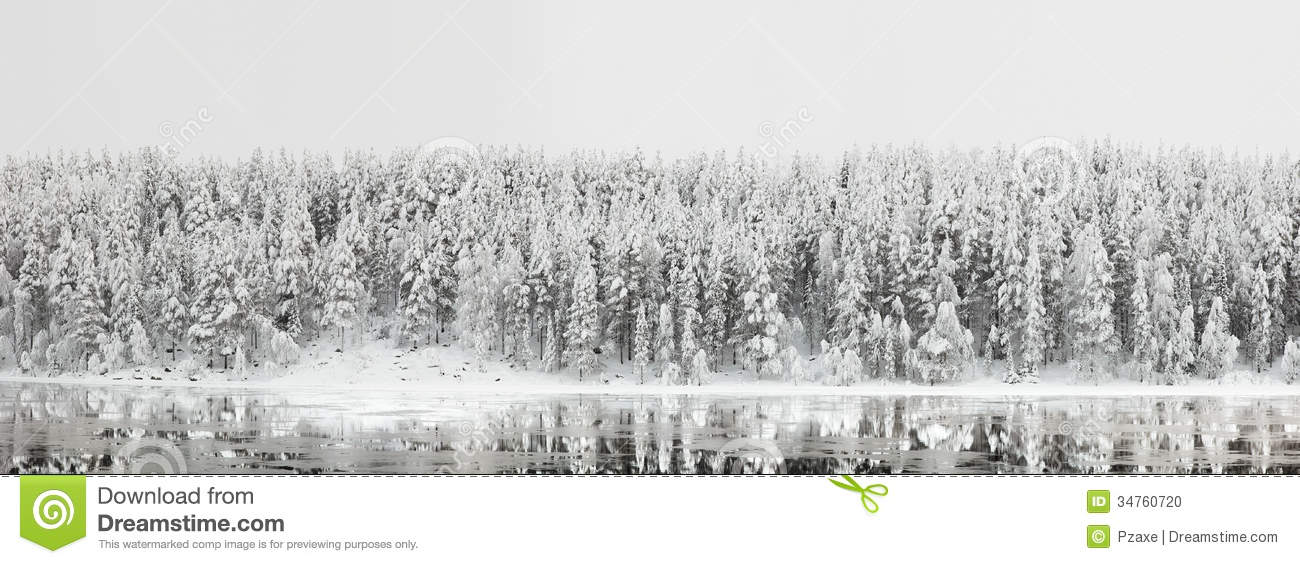 Winter Landscape. Forest Panorama With Reflection In The River.
