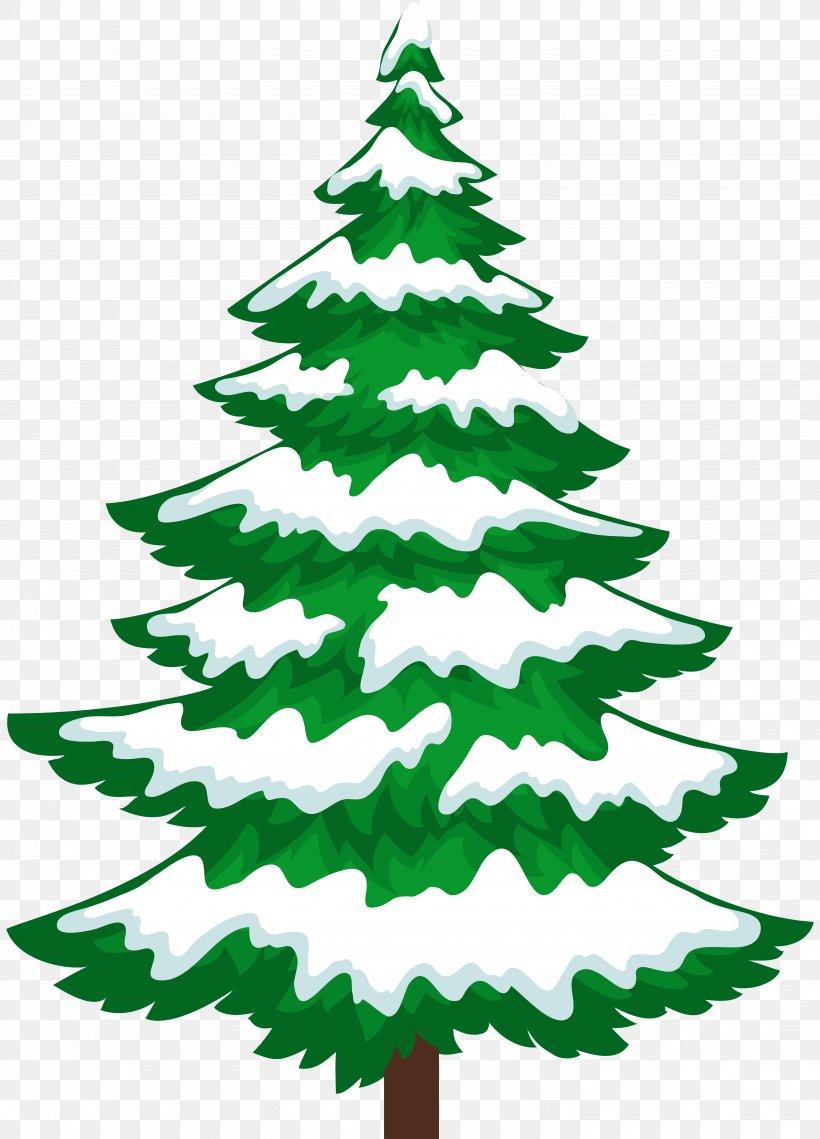 Snow Pine Tree Winter Clip Art, PNG, 5756x8000px, Snow.