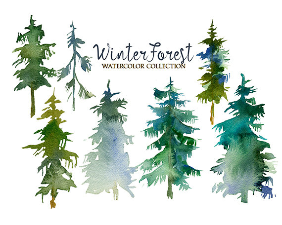 Pine Trees Watercolor Clipart Fir Trees PNG Christmas Winter.