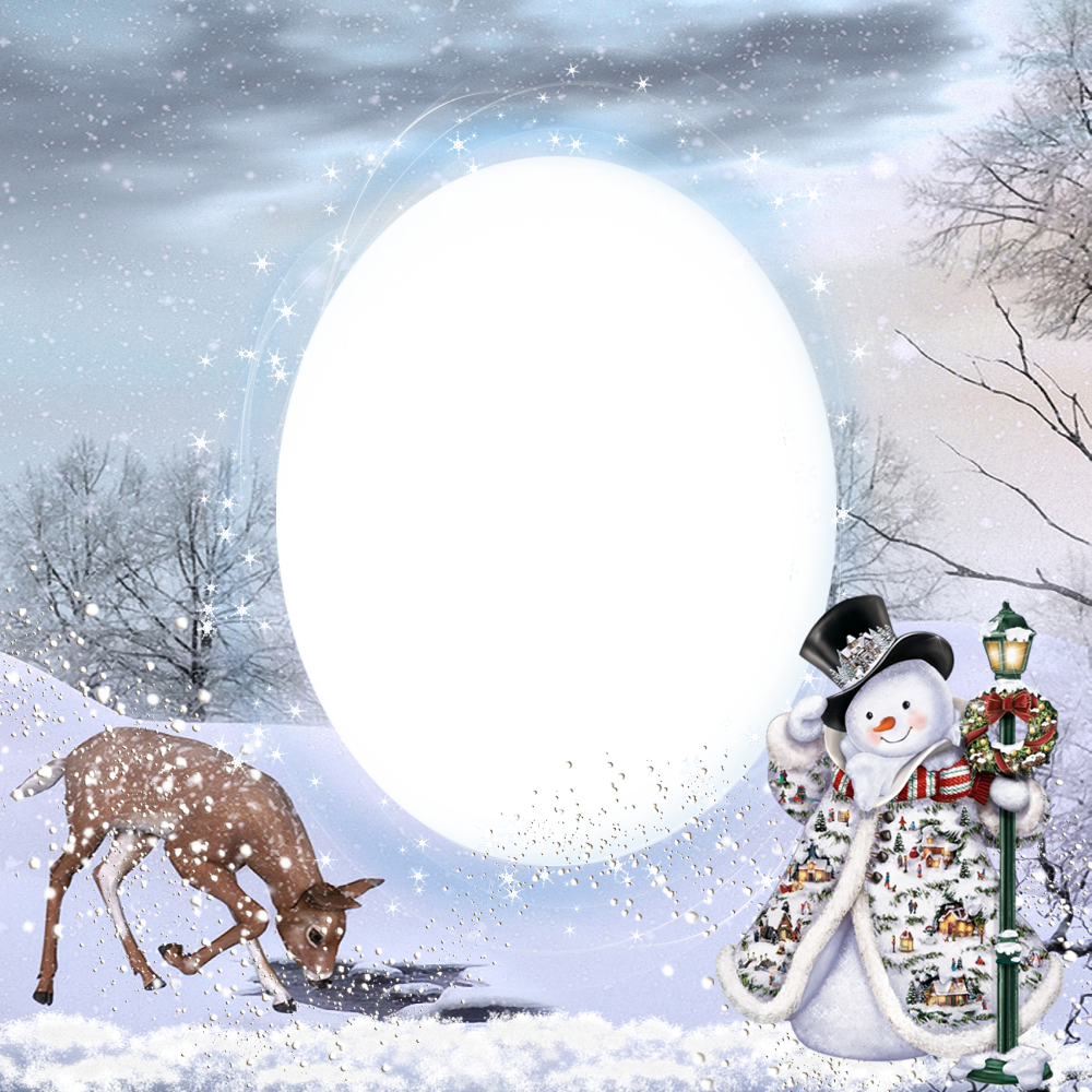 Transparent Christmas Winter PNG Photo Frame.