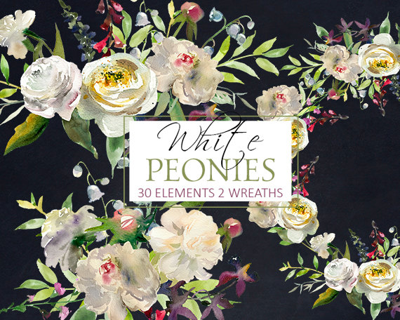 White Peony Flowers Watercolor Clipart PNG Digital Files.